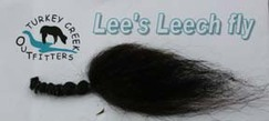Photo of Lee's Leech Flys