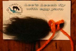 Photo of Lee's Leech Fly with Egg Yarn