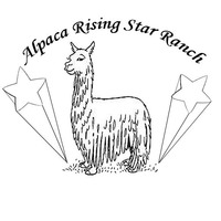 Alpaca Rising Star Ranch - Logo