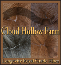 CLOUD HOLLOW FARM - Logo