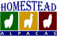 AMY J'S HOMESTEAD ALPACAS - Logo
