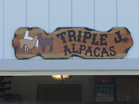 TRIPLE J ALPACAS FARM STORE - Logo