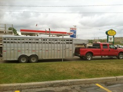 with a horse trailer driving east!