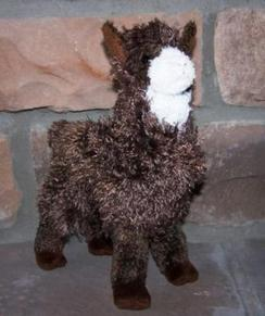 Photo of Choco Alpaca
