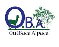 OutBaca Alpaca - Logo