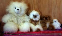 "Photo of Alpaca Teddy Bear 5.5"""