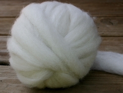 Photo of Alpaca Roving / Protege 4 oz.