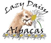 Lazy Daisy Alpacas - Logo