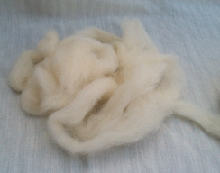 Photo of Alpaca Roving