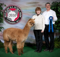 Shooting Star Alpaca Farm, LLC - Logo
