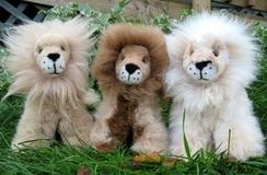 Photo of Sitting Lion