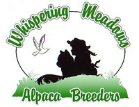 Whispering Meadows Alpaca Breeders - Logo