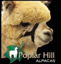 POPLAR HILL ALPACAS - Logo