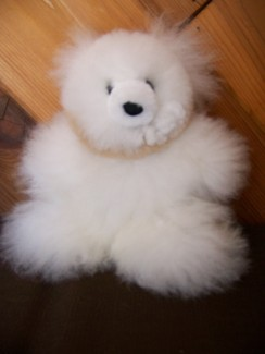 "Photo of 11"" stuffed teddy bear"
