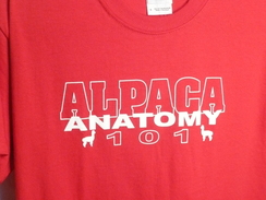 Photo of Tee-Shirt Alpaca Anatomy 101
