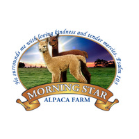 Morning Star Alpaca Farm - Logo