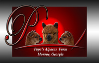Papa's Alpacas Farm - Logo