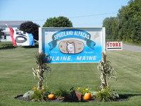 Spudland Alpacas - Logo