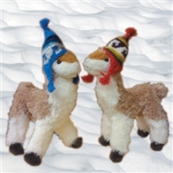 Photo of Rudi Paca with Mini Hat Ornament