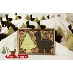 Photo of Paca Fir Soap Set