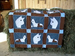 Photo of Alpaca Rag Quilt or Rag Pillows (Set$55)