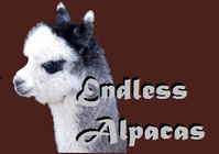 Endless Farms Alpacas - Logo