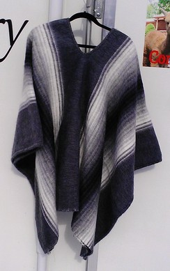 Photo of Chalan Poncho
