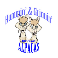 Hummin' & Grinnin' Alpacas - Logo