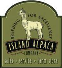 Island Alpaca Co. of Martha's Vineyard - Logo