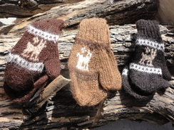 Photo of Children's Mittens