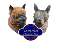Alpacas of Somerset Farm - Logo
