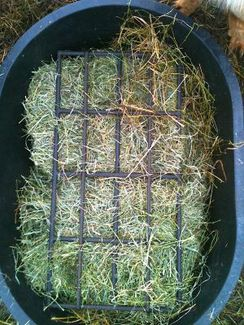 Photo of Alpaca Hay Feeder Grid