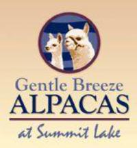 GENTLE BREEZE ALPACAS - Logo