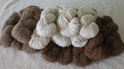 Photo of All Natural Alpaca Yarn