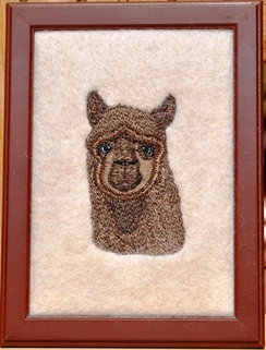 Photo of HmDecor-Embroidered Alpaca Pictures 5x7