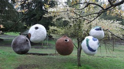 Photo of Felt Birdhouses