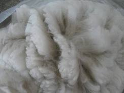 Photo of 100% Ultrafine Prime Alpaca Fleece