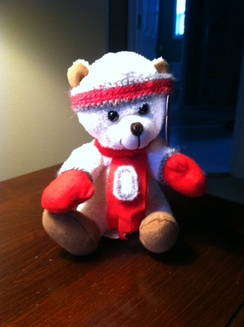 Photo of Ohio State Fan Bear