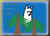 Alpacas Of Pinney Valley - Logo
