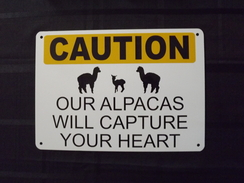 Photo of Alpaca Caution Sign