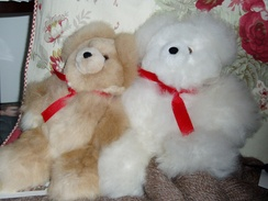 Photo of Pocket Alpaca Bears