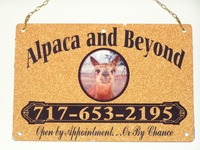 Alpaca and Beyond - Logo