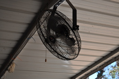 Ceiling fans for good air circulation
