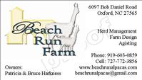 Beach Run Farm - Logo