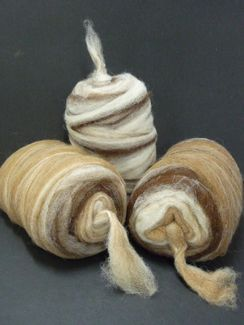 Photo of Rovings Varigated Natural Colors