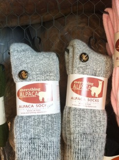 Photo of Alpaca Socks