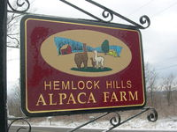 Hemlock Hills Alpaca Farm - Logo