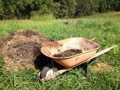 Active Compost Pile