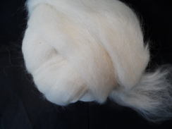 Photo of Roving (Suri/Huacaya Blend)