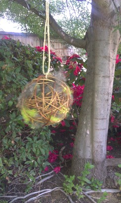 Photo of Nesting Balls